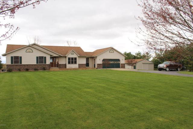 21263 Trufant Road, Pierson, MI 49339 (MLS #19018449) :: Matt Mulder Home Selling Team
