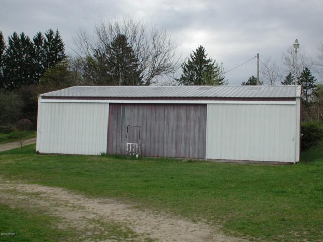 25951 C.R. 358, Lawton, MI 49065 (MLS #19019146) :: Matt Mulder Home Selling Team