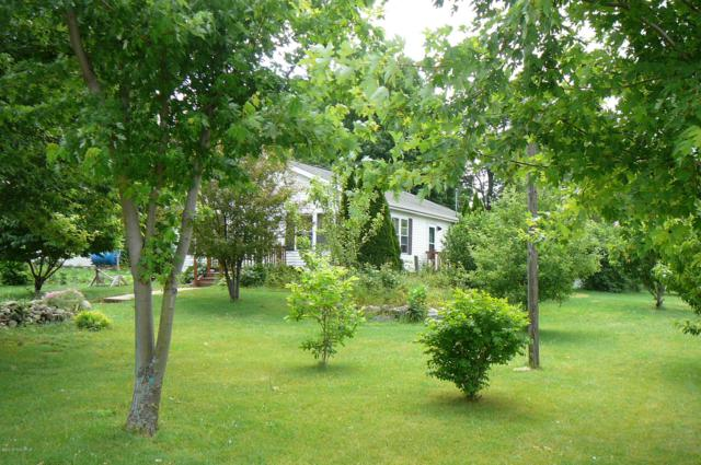 243 Washington Street, Litchfield, MI 49252 (MLS #19020012) :: Deb Stevenson Group - Greenridge Realty