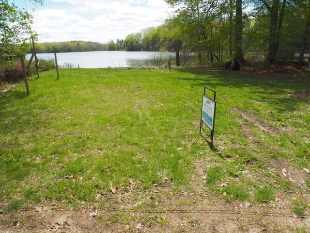 1504 N Big Lake Drive, Hopkins, MI 49328 (MLS #19020203) :: Matt Mulder Home Selling Team