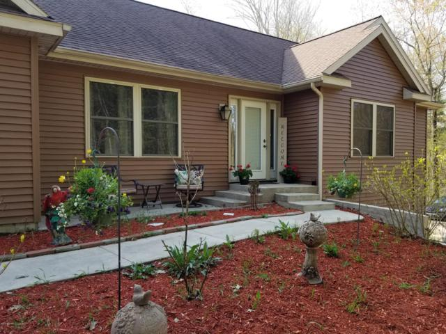 52725 County Rd 384, Grand Junction, MI 49056 (MLS #19020240) :: Deb Stevenson Group - Greenridge Realty