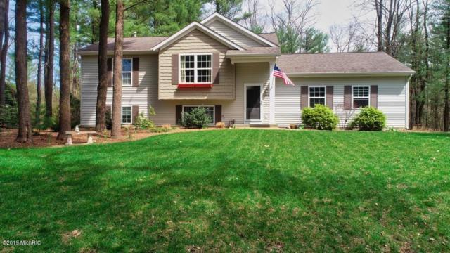 2461 Orchard Valley Drive, Fennville, MI 49408 (MLS #19020316) :: Matt Mulder Home Selling Team
