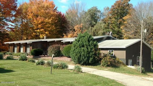 9270 M-46, Lakeview, MI 48850 (MLS #19020404) :: Matt Mulder Home Selling Team