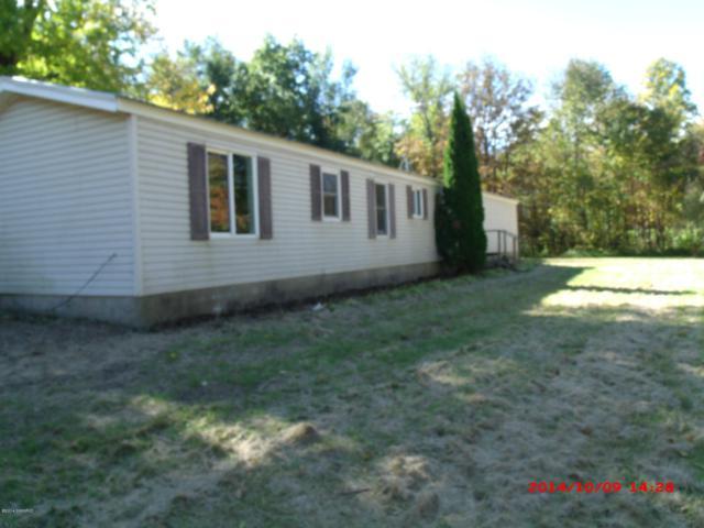 57293 18TH Avenue, Grand Junction, MI 49056 (MLS #19021475) :: Deb Stevenson Group - Greenridge Realty