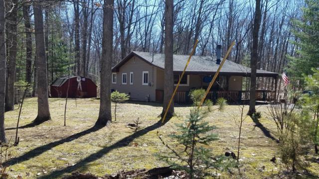7778 Shoshone Trail, Branch, MI 49402 (MLS #19021517) :: Matt Mulder Home Selling Team