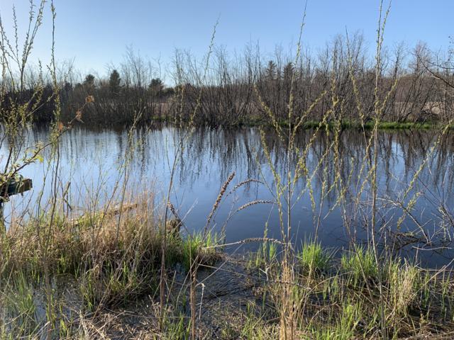 River View Drive, Ludington, MI 49431 (MLS #19021670) :: Deb Stevenson Group - Greenridge Realty