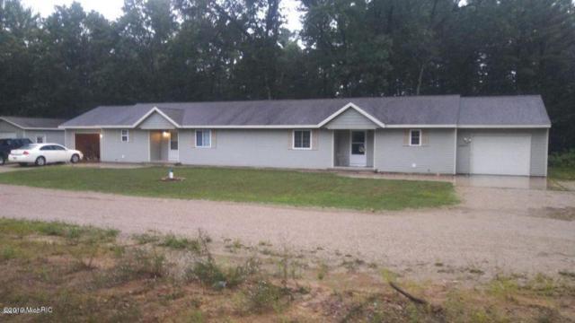 3640 Locust Avenue, Newaygo, MI 49337 (MLS #19021884) :: Matt Mulder Home Selling Team