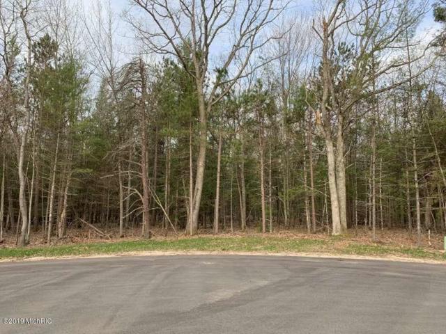 6567 W Juliana Drive, Ludington, MI 49431 (MLS #19021924) :: Matt Mulder Home Selling Team