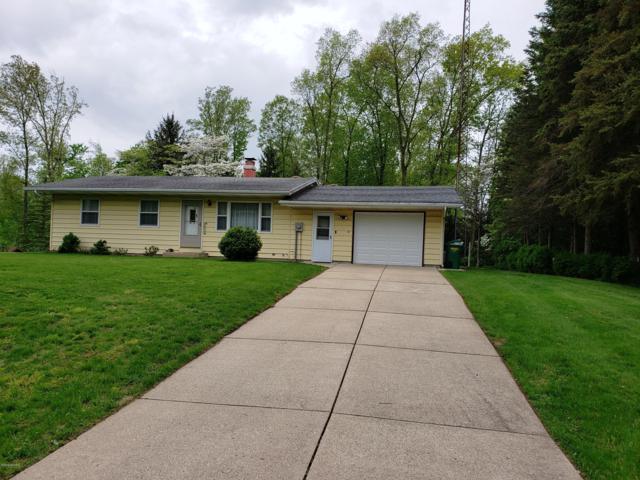 57126 Sigulda Road, Three Rivers, MI 49093 (MLS #19022031) :: Matt Mulder Home Selling Team