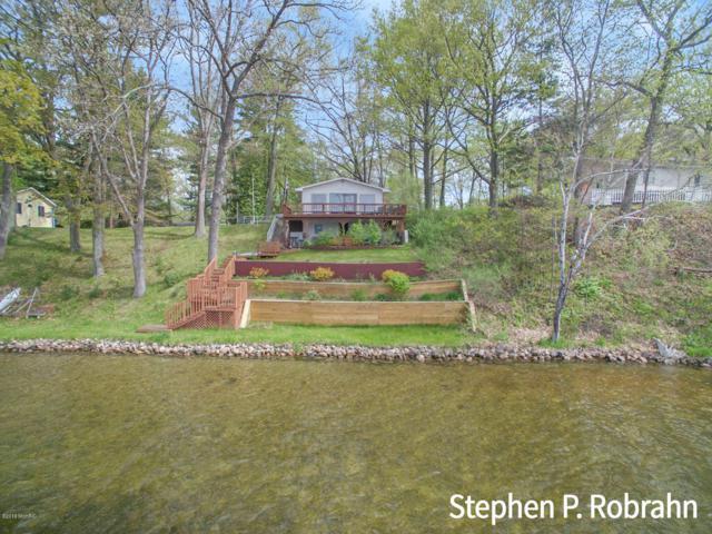 6109 Honeymoon Drive, Lakeview, MI 48850 (MLS #19022165) :: Matt Mulder Home Selling Team