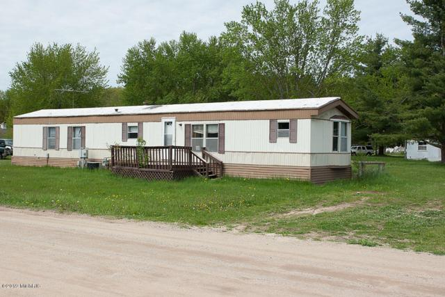 3285 Owen Avenue, Newaygo, MI 49337 (MLS #19022534) :: Matt Mulder Home Selling Team