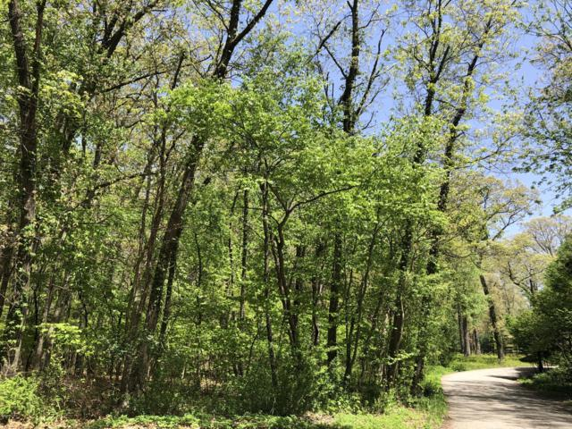 0 Chickagami Trail, New Buffalo, MI 49117 (MLS #19022567) :: Deb Stevenson Group - Greenridge Realty