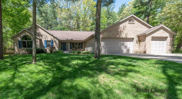 1909 Shining Tree Dr, Belmont, MI 49306 (MLS #19022631) :: JH Realty Partners
