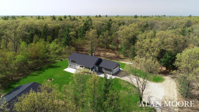 9095 E 56th Street, Newaygo, MI 49337 (MLS #19022736) :: Matt Mulder Home Selling Team