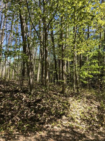 VL W. Freeman Rd., Free Soil, MI 49411 (MLS #19022757) :: Deb Stevenson Group - Greenridge Realty