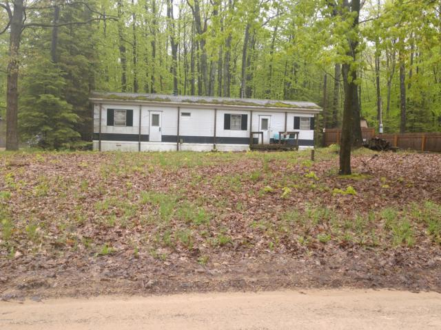 155 N Beech Road, Walkerville, MI 49459 (MLS #19022998) :: Deb Stevenson Group - Greenridge Realty