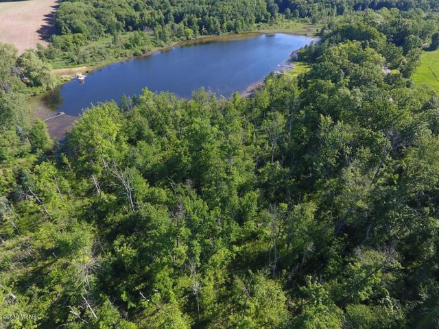 460 Swains Lake Drive, Concord, MI 49237 (MLS #19023943) :: Deb Stevenson Group - Greenridge Realty