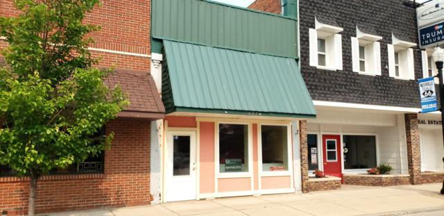 223 Main Street, Nashville, MI 49073 (MLS #19024170) :: JH Realty Partners