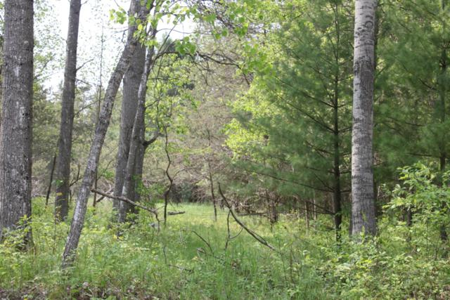 7137 E 1 Mile Road, Luther, MI 49656 (MLS #19024339) :: JH Realty Partners