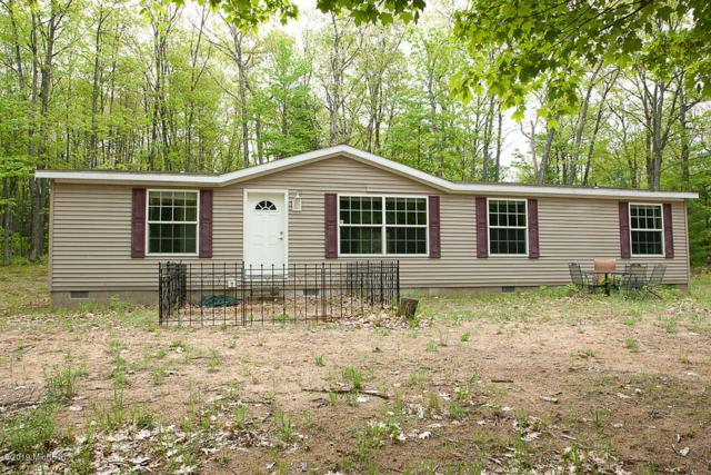 8589 Hillview Trail, Reed City, MI 49677 (MLS #19024442) :: CENTURY 21 C. Howard