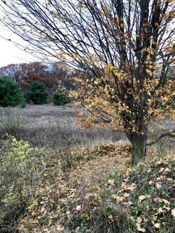 S Mocking Bird Lane Parcel C, Grant, MI 49327 (MLS #19024756) :: Deb Stevenson Group - Greenridge Realty