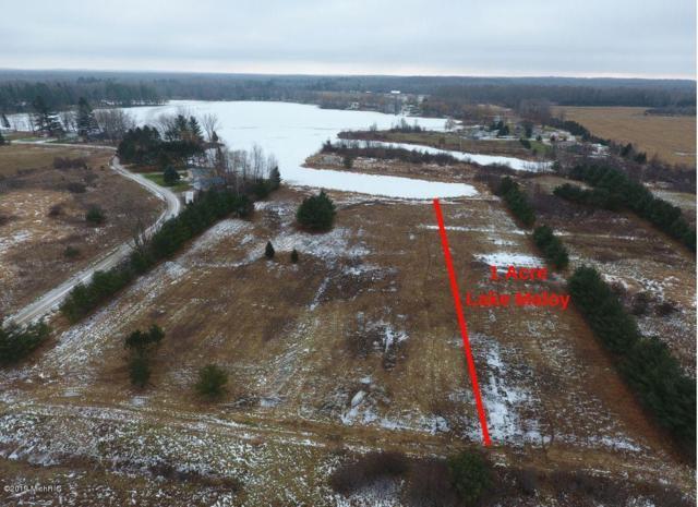 1 Acre Lake Maloy, Sears, MI 49679 (MLS #19024833) :: CENTURY 21 C. Howard
