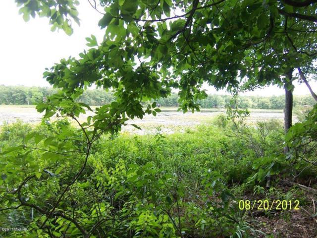 7382 Oak Shore Drive, Twin Lake, MI 49457 (MLS #19024883) :: Deb Stevenson Group - Greenridge Realty