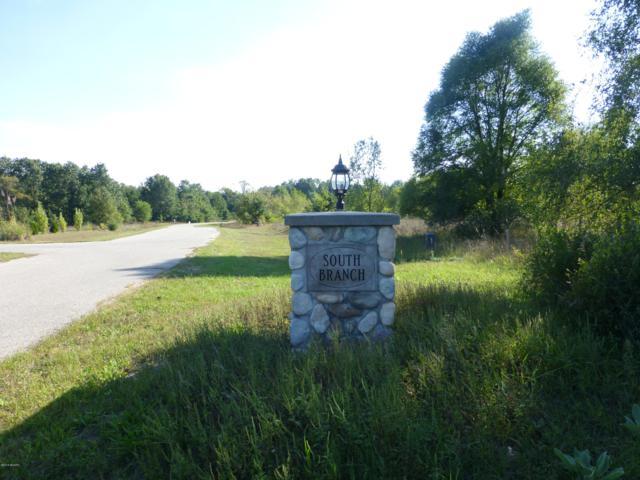 S South Branch Lane 24 & 25, Hesperia, MI 49421 (MLS #19024889) :: Deb Stevenson Group - Greenridge Realty