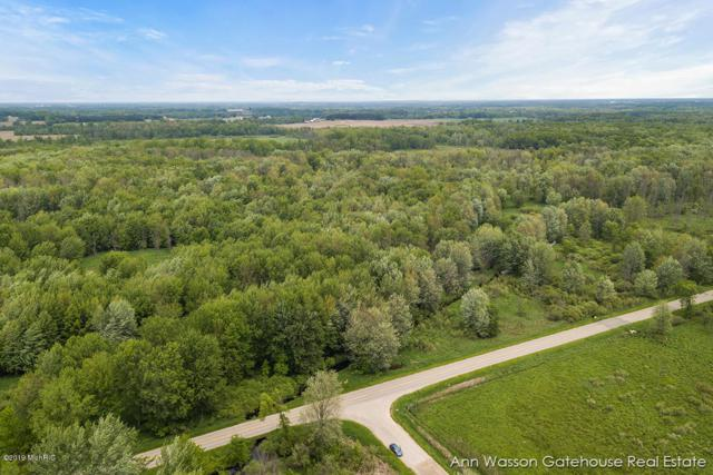 8356 21 Mile Road, Sand Lake, MI 49343 (MLS #19025092) :: Deb Stevenson Group - Greenridge Realty