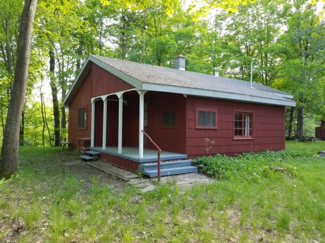 15087 Craft Road, Hersey, MI 49639 (MLS #19025629) :: Matt Mulder Home Selling Team