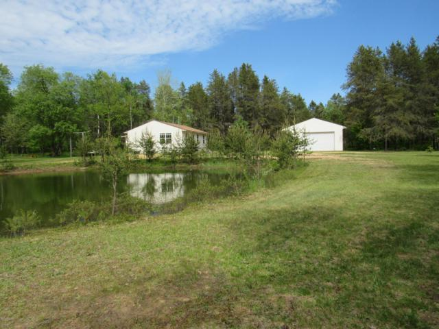 7584 E Freeman Road, Free Soil, MI 49411 (MLS #19025705) :: JH Realty Partners
