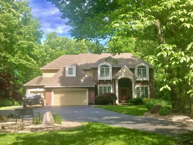 7580 Fieldwood Circle, Mattawan, MI 49071 (MLS #19025831) :: Matt Mulder Home Selling Team