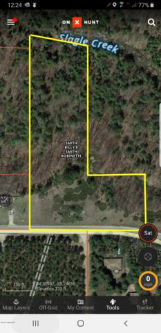 V/L 30 Road, Harrietta, MI 49638 (MLS #19025860) :: Deb Stevenson Group - Greenridge Realty