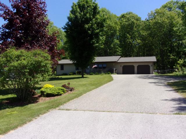 907 Scott Drive, Cadillac, MI 49601 (MLS #19025908) :: Deb Stevenson Group - Greenridge Realty