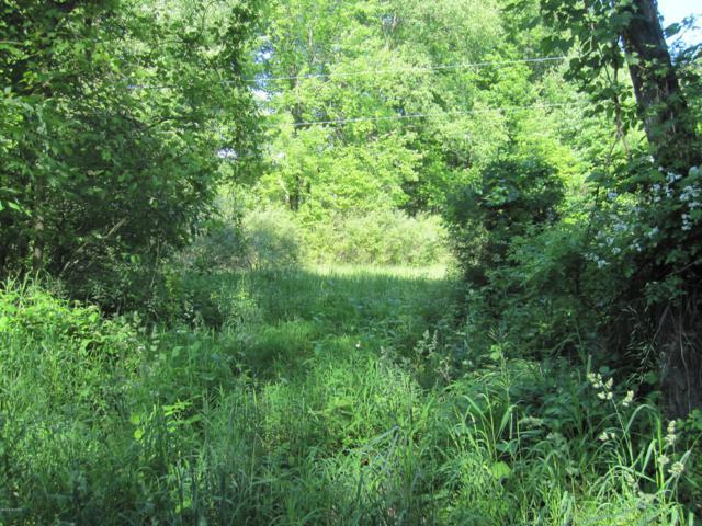 21311 Paulson Road, Gobles, MI 49055 (MLS #19026034) :: CENTURY 21 C. Howard