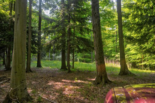 Lost Canyon Road #6, Pentwater, MI 49449 (MLS #19026599) :: Deb Stevenson Group - Greenridge Realty