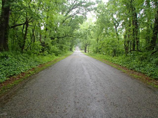 0 17 Mile Road, Marshall, MI 49068 (MLS #19026776) :: Matt Mulder Home Selling Team