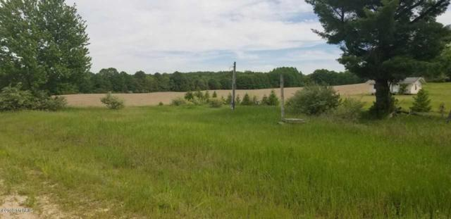 3275 E Winter Road, Walkerville, MI 49459 (MLS #19026902) :: Deb Stevenson Group - Greenridge Realty