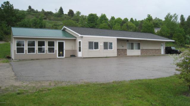 10700 Deadstream Road Road, Honor, MI 49640 (MLS #19027041) :: Deb Stevenson Group - Greenridge Realty
