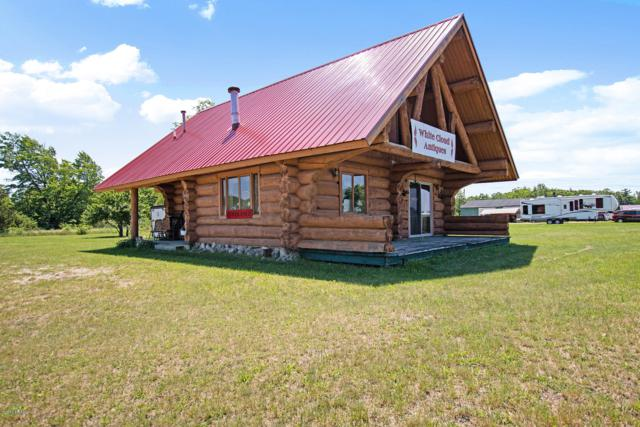 1228 Washington Street, White Cloud, MI 49349 (MLS #19027152) :: Deb Stevenson Group - Greenridge Realty