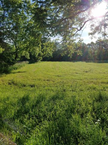 867 Riverview Drive, Plainwell, MI 49080 (MLS #19027197) :: Matt Mulder Home Selling Team