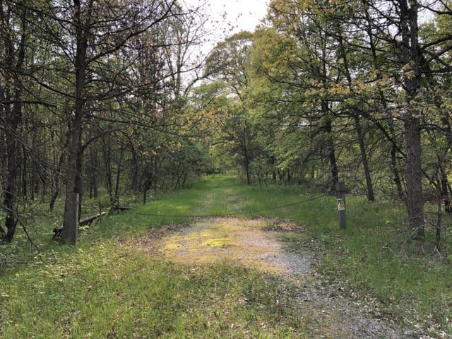 4011 Wilderness Trail, Luther, MI 49656 (MLS #19027231) :: Deb Stevenson Group - Greenridge Realty
