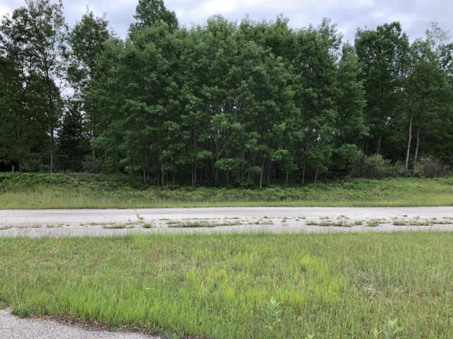 8514 Blackberry Court, Canadian Lakes, MI 49346 (MLS #19027422) :: JH Realty Partners