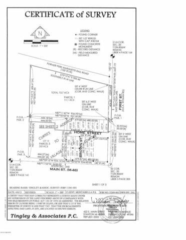 500 W Home Street, Edmore, MI 48829 (MLS #19027546) :: CENTURY 21 C. Howard