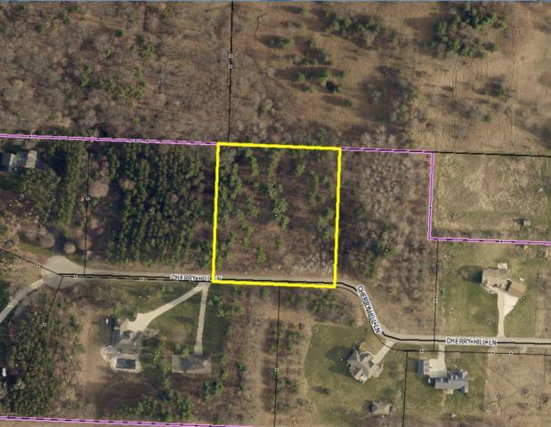 25500 Cherry Hill Lane, Gobles, MI 49055 (MLS #19028063) :: Matt Mulder Home Selling Team