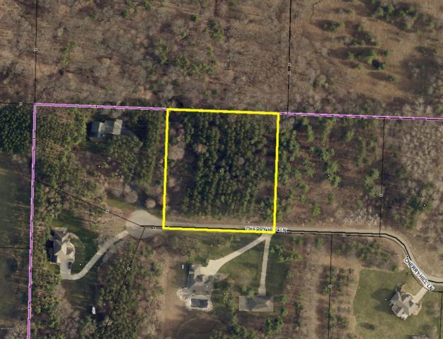 25602 Cherry Hill Lane, Gobles, MI 49055 (MLS #19028066) :: Matt Mulder Home Selling Team