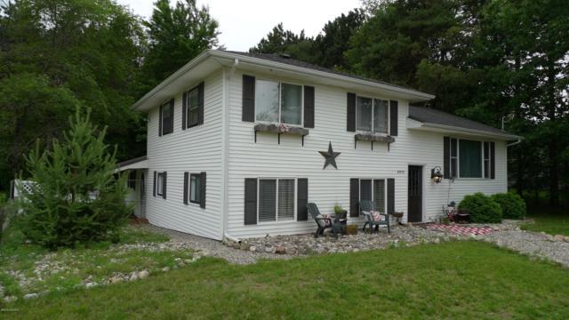 8913 W Suwanee Trail, Howard City, MI 49329 (MLS #19028091) :: CENTURY 21 C. Howard