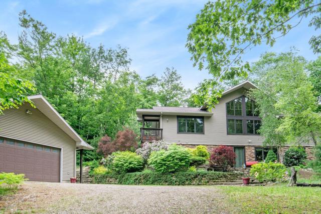 8990 Milarch Road, Onekama, MI 49675 (MLS #19028269) :: Matt Mulder Home Selling Team