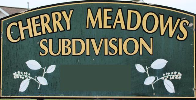 18790 Serenity #9, Big Rapids, MI 49307 (MLS #19028320) :: Matt Mulder Home Selling Team