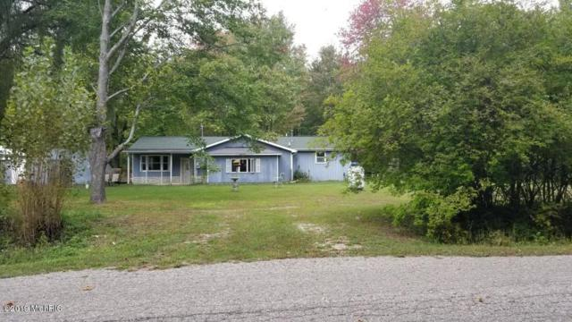 2438 W Lake Road, Hart, MI 49420 (MLS #19028443) :: JH Realty Partners
